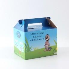 Boite en carton avec poignée