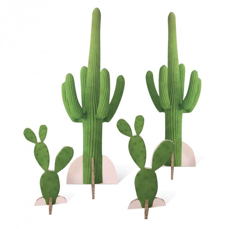Cactus en carton  Accueil