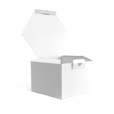 BIKOM Boitehexagonaleen carton - 26 x 13cm